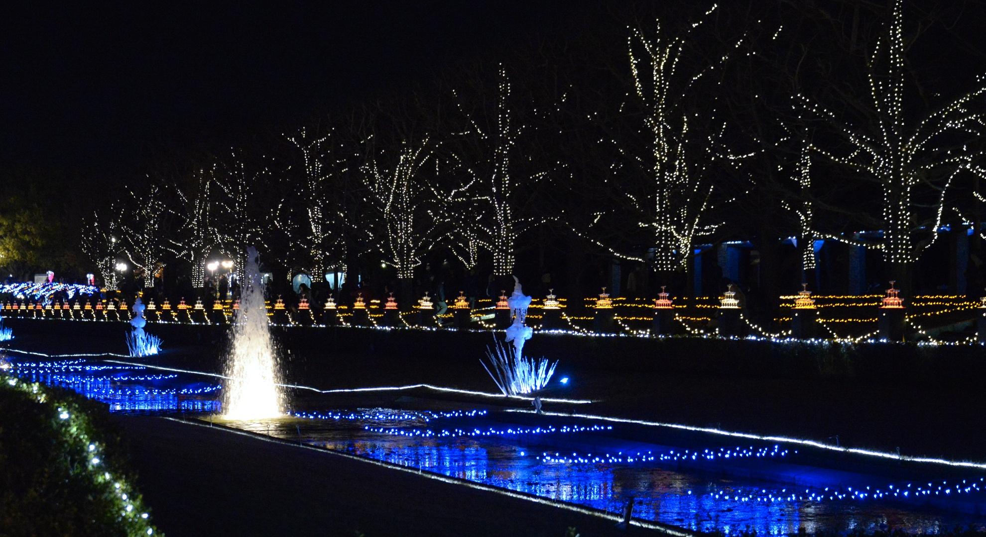 昭和記念公園ライトアップ 壁紙